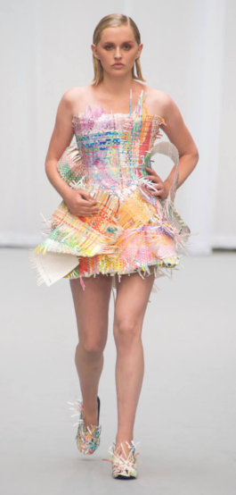Min van der Plus Rainbow Dress (2013)